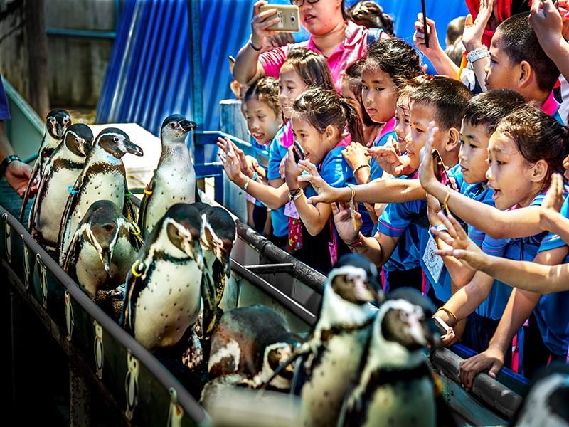 4 สวนสัตว์ในประเทศไทย ที่ต้องไปสักครั้ง