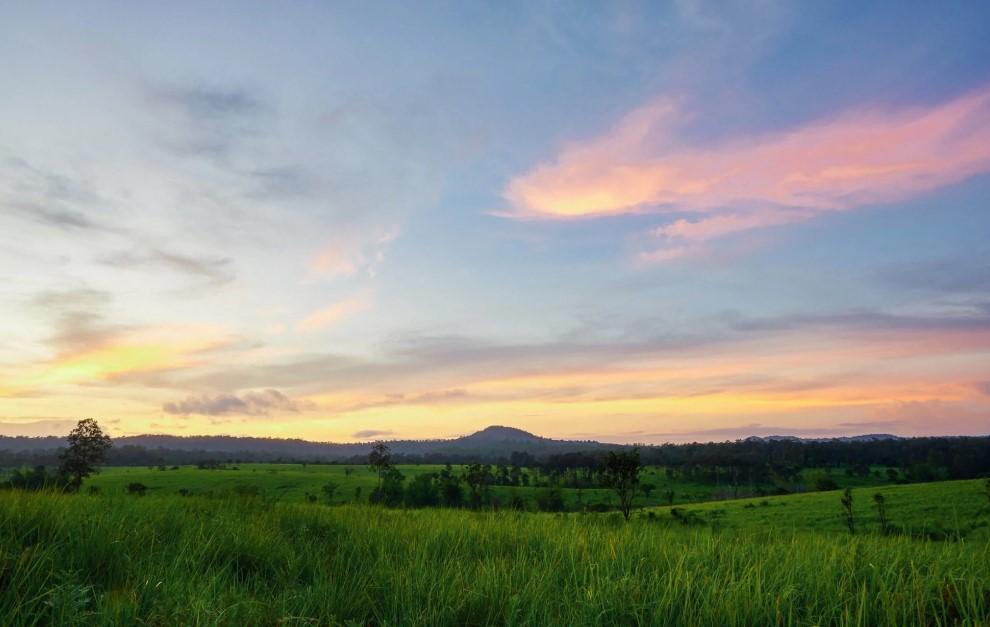"""พาหัวใจไปแวะพัก ชมความงดงามในท้องทุ่งสีเขียว ของ """"ทุ่งแสลงหลวง"""""""